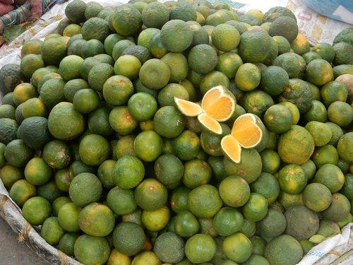 kalamansi  lime  fruit