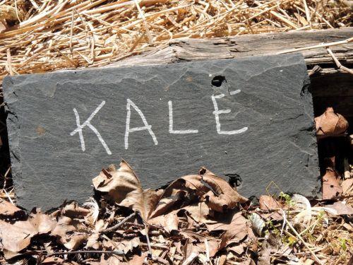 Kale Garden Sign