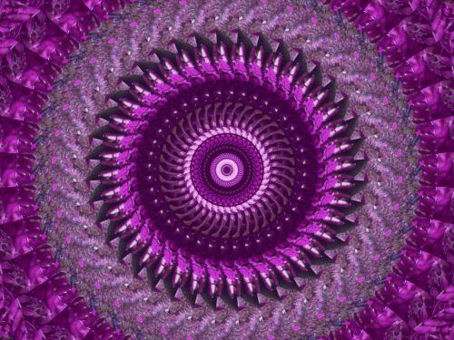 Kaleidoscope Background From Ferns