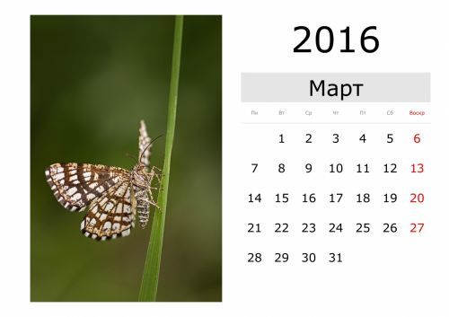 Calendar - March 2016 (Russian)