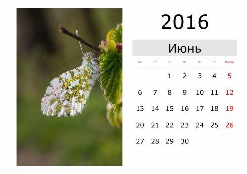 Calendar - June 2016 (Russian)
