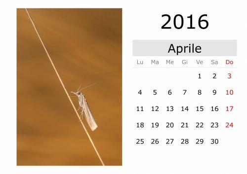 Calendar - April 2016 (Italian)