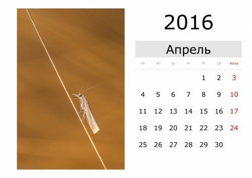 Calendar - April 2016 (Russian)