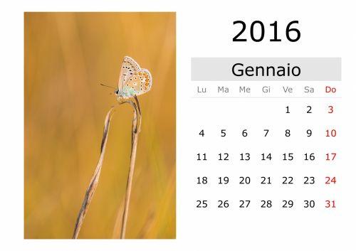 Calendar - January 2016 (Italian)