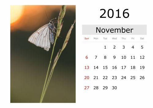 Calendar - November 2016 (English)