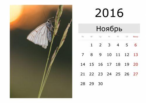 Calendar - November 2016 (Russian)