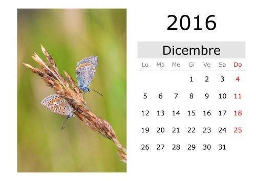 Calendar - December 2016 (Italian)