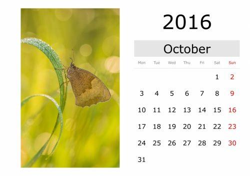 Calendar - October 2016 (English)