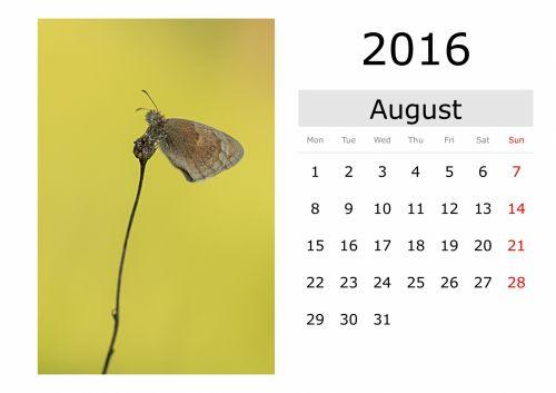 Calendar - August 2016 (English)