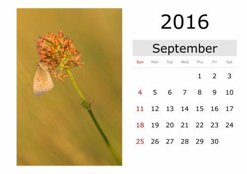 Calendar - September 2016 (English)