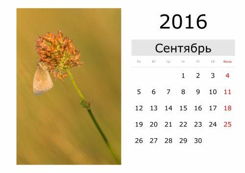Calendar - September 2016 (Russian)