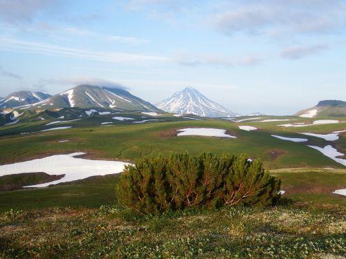 kamchatka,kalnų plynaukštė,tundra,vulkanas,sniegas,vasara,Rugpjūtis,kalnai,kedras,krūmas,atvira erdvė,keliai,aukštis,kraštovaizdis,gamta,kelionė