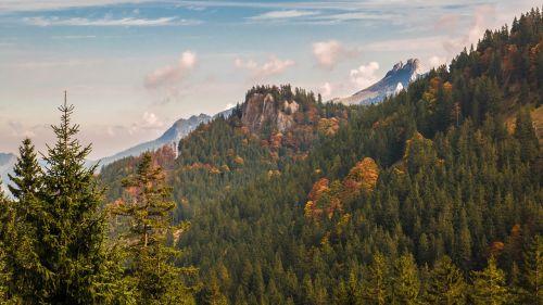 kampenwand fall color mountains autumn