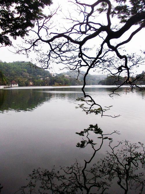 kandy lake lake kandy