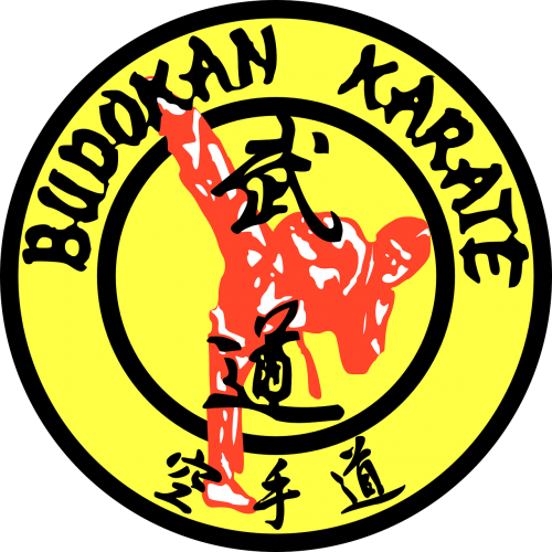 karate martial arts karate-do