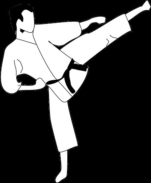 karate kick sports