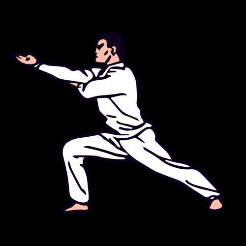 karate judo man
