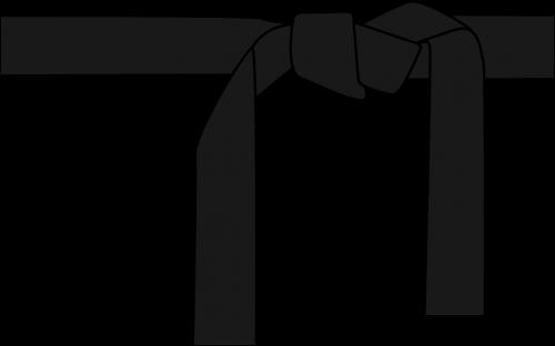 karate judo belt
