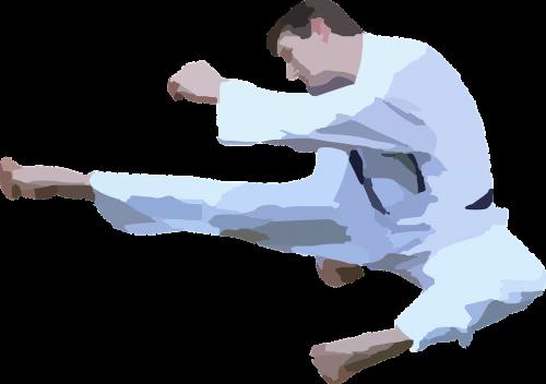 karate kick jumping