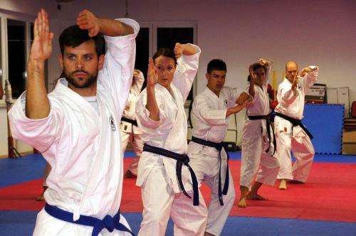 karate martial arts sport