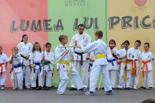 karate martial arts kids