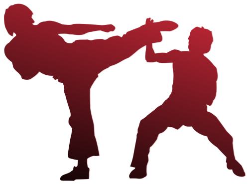 karate silhouette outline