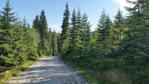 karpacz mountains hiking trails