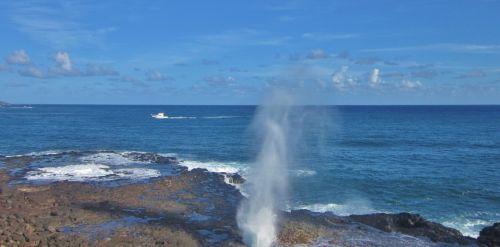 kauai sprouting horn geyser