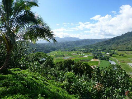 kauai hanalei hawaii