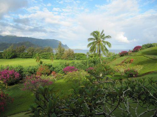 kauai hanalei bay ocean