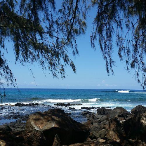 kauai life hawaii life hawaii living