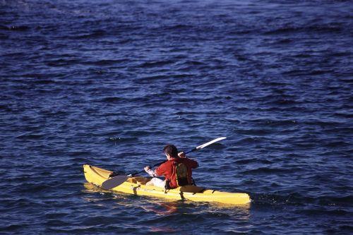 kayak boat paddling