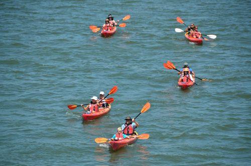 kayaks people leisure