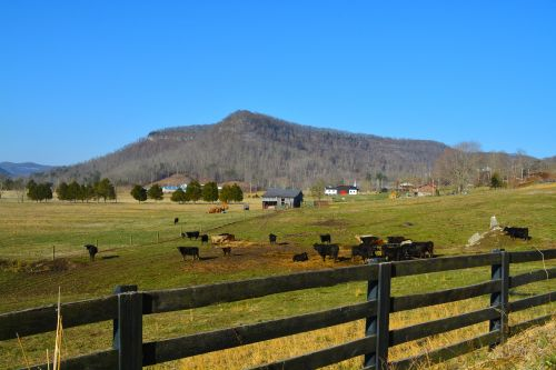 kentucky farm scenic