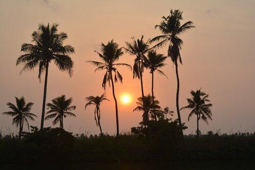 kerala  sun set  outdoor