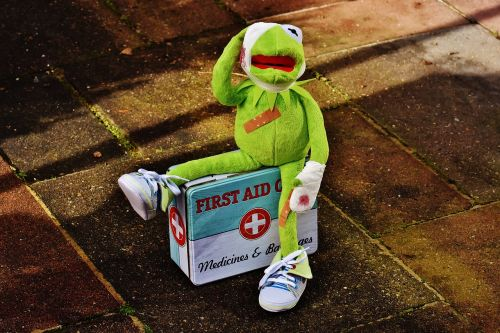 kermit first aid injured