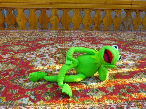 kermit frog concerns