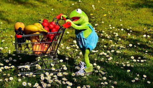 kermit shopping cart healthy shopping