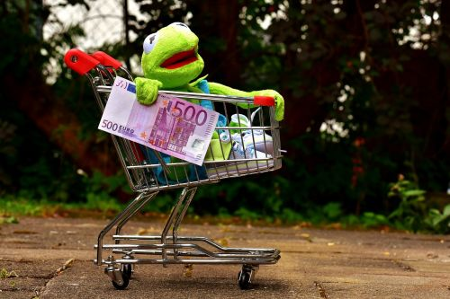 kermit shopping cart shopping