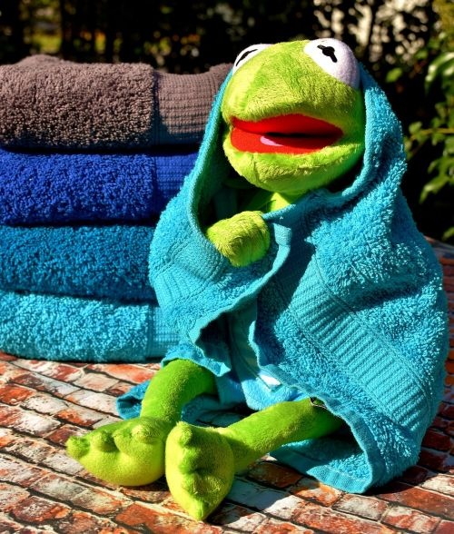 kermit towels blue