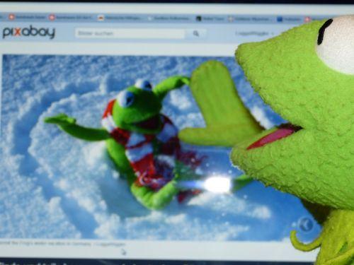 kermit frog computer