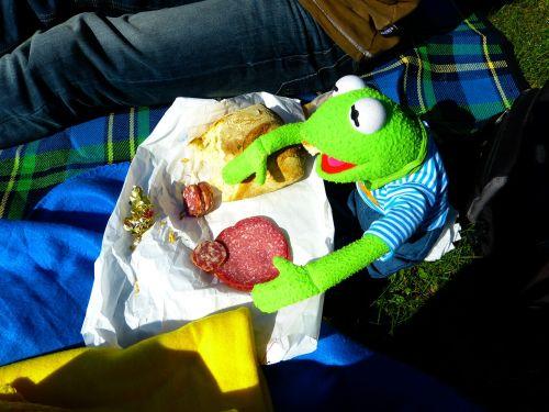 kermit frog eat