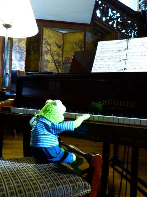 kermit frog piano