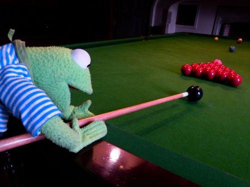kermit frog billiards