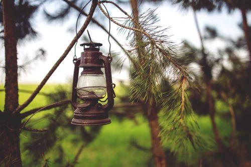kerosene lamp woods