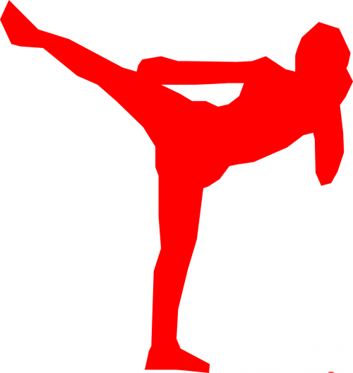 kickboxer silhouette fighter