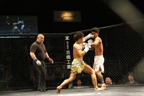 kickboxing boxing cage