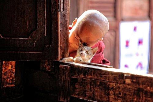 kids  child  myanmar