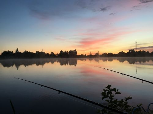 kiel fish sunrise