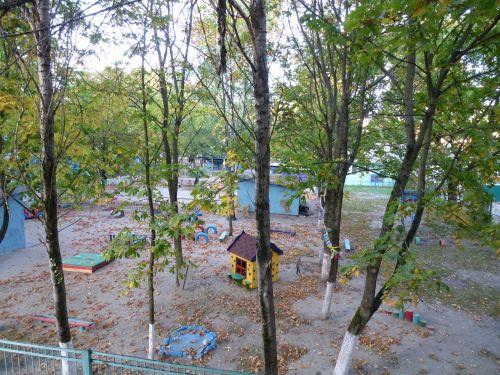 kindergarten autumn park